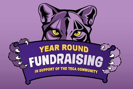 Fundraising_Panther_FB.png