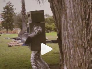 MISSION: ROBOT - Teaser-gram