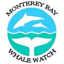 Monterey Bay Whale Watch.jpeg