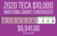TECA_2020_Matching_Grant_horizontal_July