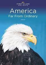 AMERICA COVER.jpg