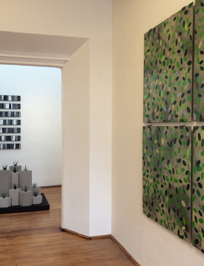 Frequency Variations (installation detail)