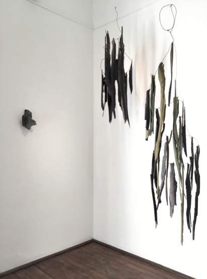 Constructed Nature (installation view)