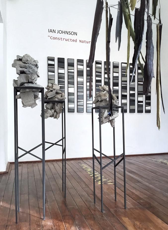 Constructed Nature (installatin view)  (solo) exhibition: Interseccion Arte Contemporaneo, MX Feb-April 2019