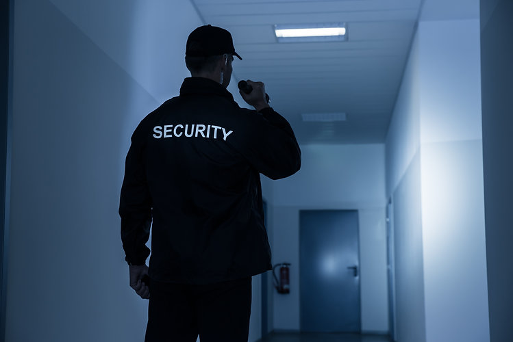 Rear view of security guard with flashli