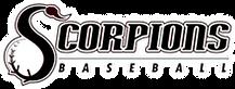 Scorpion Baseball Academy.png