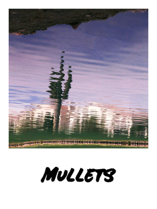 Mullets Oct 16 2021.png
