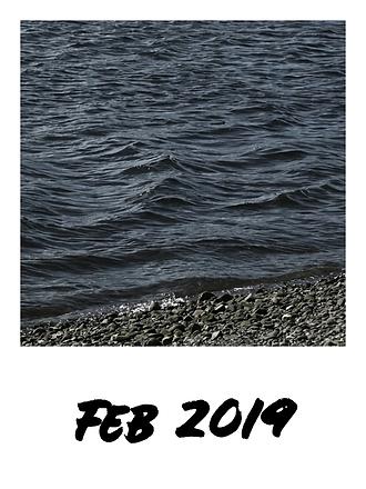 Feb 2019 2.png