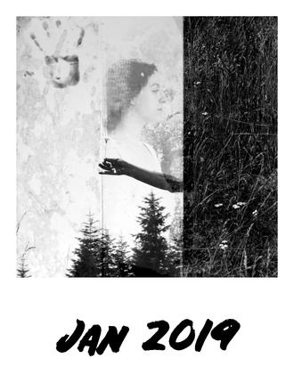Jan 2019 1.png