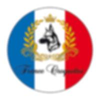 FranceCroKsiteCocarde.jpg