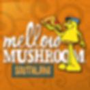 Mellow Mushroom Southlake.jpg