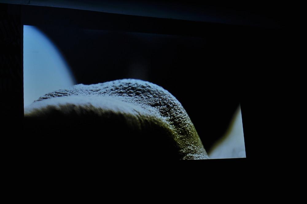 Moonscape - Linus Misera