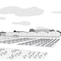 Bois des anses - fermes urbaines - Claas.
