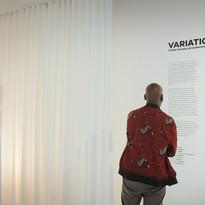 Variations ©Julien Lanoo