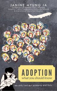 Adoption: What You Should Know |  eBook version