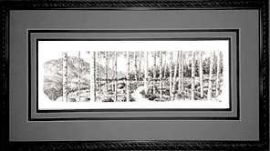 Aspen Grove, Framed