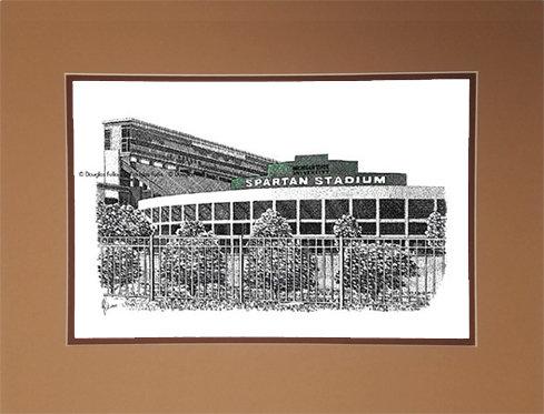 Spartan Stadium, Matted
