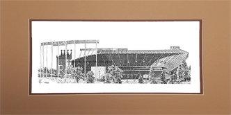 Kauffman Stadium, Matted