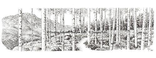Aspen Grove, Print