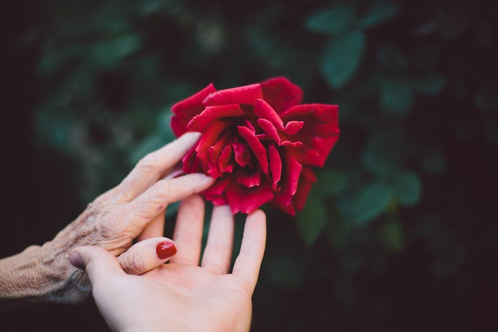 Mère fille autour d'une rose rouge