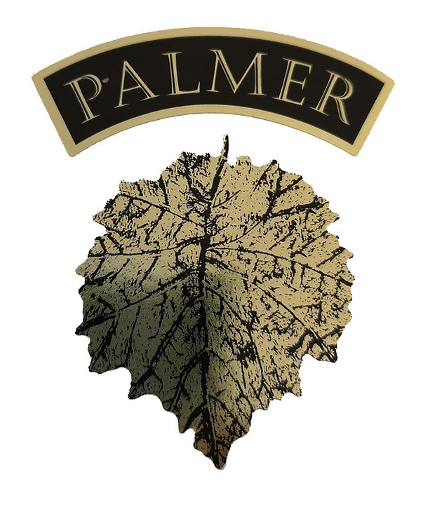 palmer web.jpg