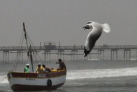 Découverte et visite de Chiclayo plage de pimentel sejour au Pérou