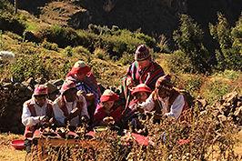 Famille et enfants, voyage au Pérou