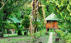 Circuit et voyage Eco Lodge en Amazonie, le climat