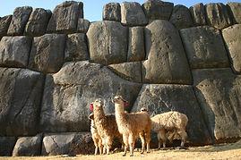 Voyager et visiter le Pérou Sacsayhuamán à Cusco