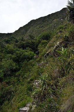 Monter à la Montagne du Machu Picchu