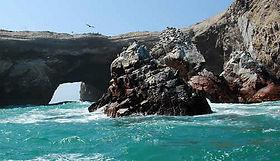 Excursion privée  iles Ballestas de Paracas