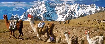 Randonnée trek de Lares au Machu Picchu