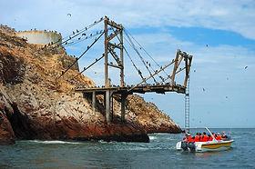 Excursion aux  iles Ballestas de Paracas