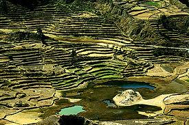Découverte et trek dans le Canyon de Colca