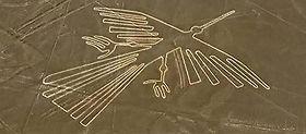 Excursion privée survol des géoglyphes de Nazca