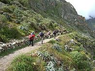 Trek du Chemin de l'inca Real km 104 au Machu Picchu