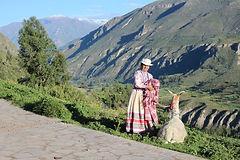 Climat à Chivay découverte du Pérou