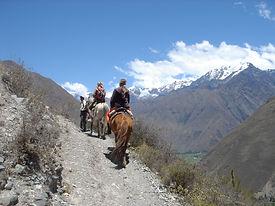 Circuit famille à chevalbalades et randonnées