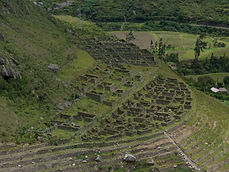 Circuit a la carte trekking Trekking du Chemin de l'Inca Km 82, au Machu Picchu