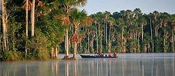 La réserve de Tambopata en Amazonie, à voir au Pérou