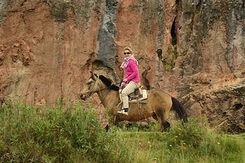 Aventure à chevalbalades et randonnées