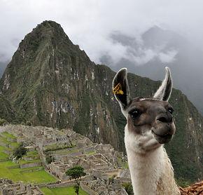 Machu Picchu Conseils pour une visite dans les meilleures conditions