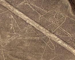 Séjour sur la cote sud du Pérou survol des dessins de Nazca