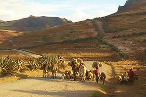 Trek de Moray aux Salines de Maras