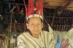 Le Parc national du Manu, découverte et voyage au Pérou