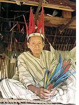 Rencontre des ethnies au parc du Manu en amazonie