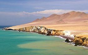 La réserve nationale de Paracas, découverte et voyage au Pérou