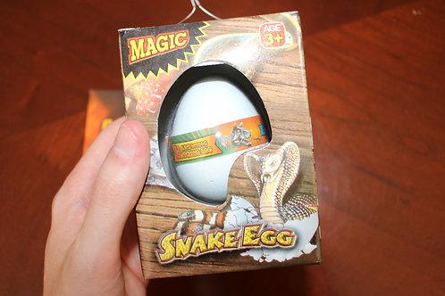 Snake Egg Toy