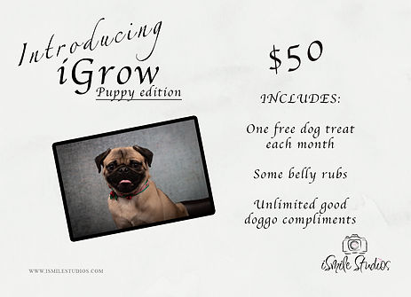 iGrow puppy.jpg
