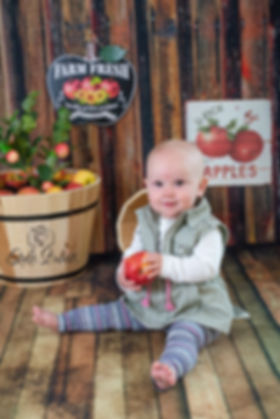 apple front window.jpg